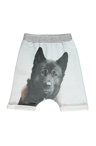 Baggy Shorts Dog Blå